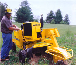 stump grinder action